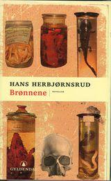 Illustrasjonsbilde for omtalen av Brønnene av Hans Herbjørnsrud