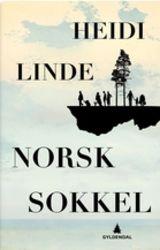 Linde, Heidi : Norsk sokkel : roman