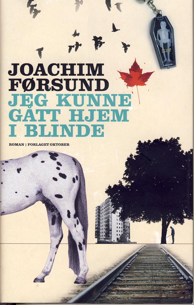 Jeg kunne gått hjem i blinde : roman