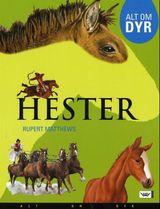 """""""Hester"""""""