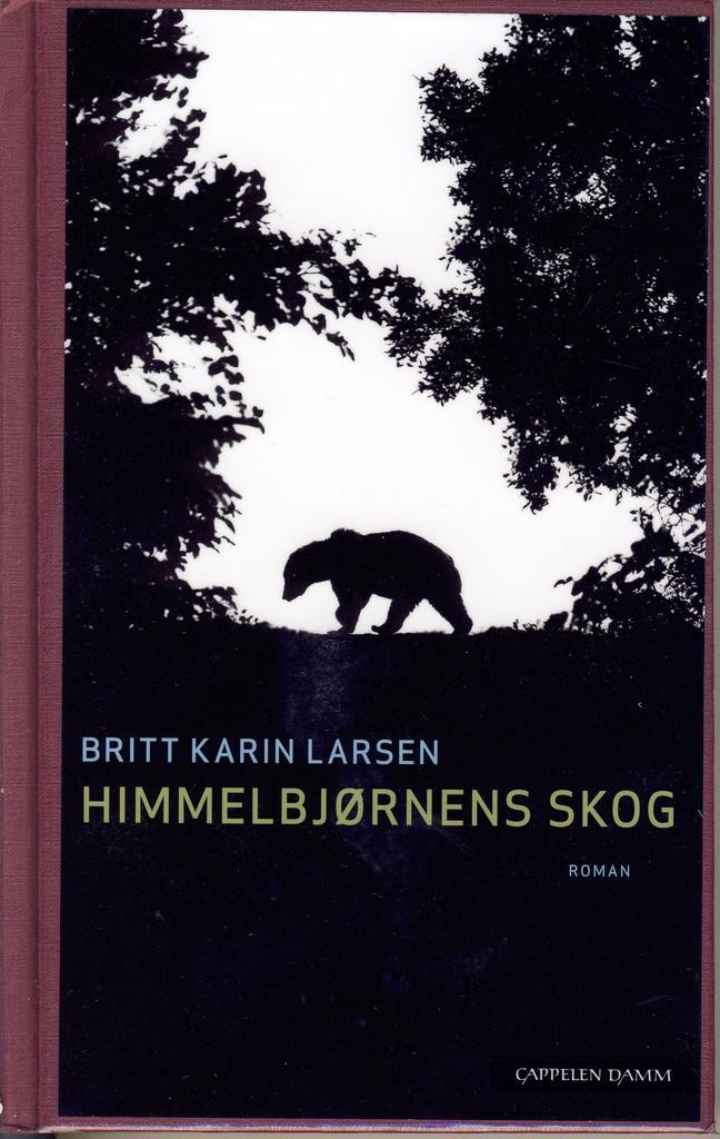Himmelbjørnens skog : roman