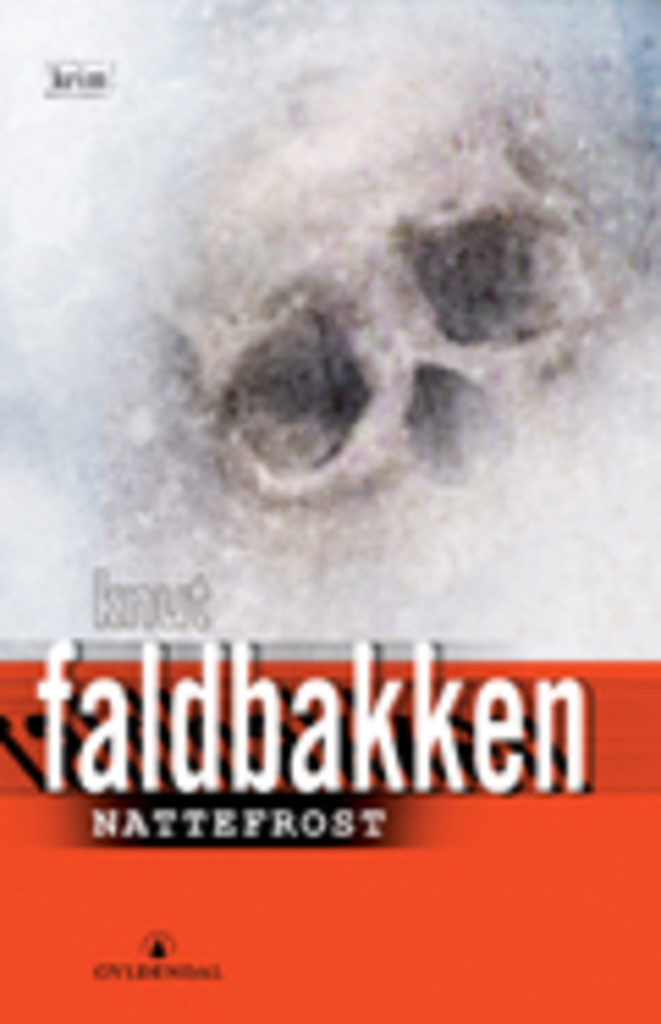 Nattefrost : kriminalroman