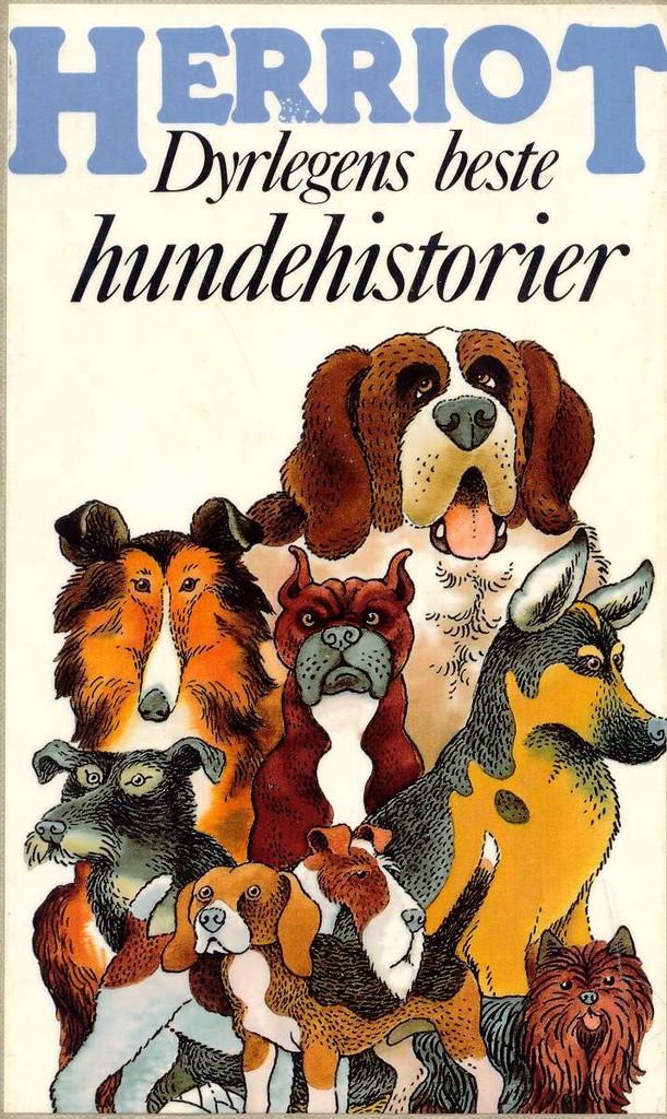 Dyrlegens beste hundehistorier