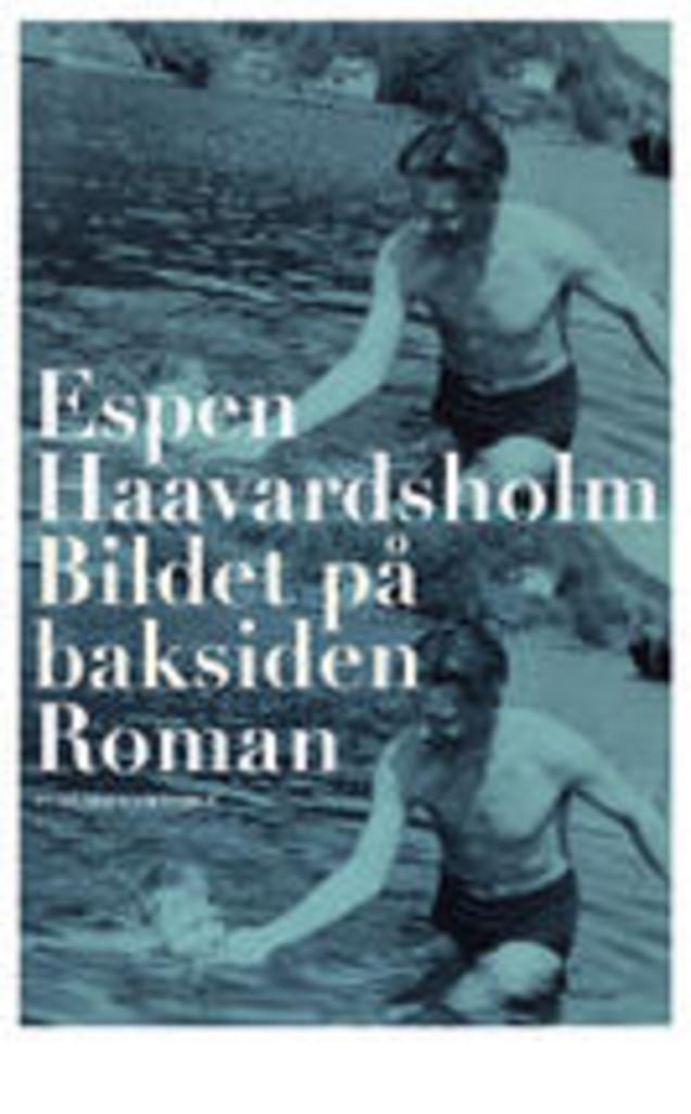Bildet på baksiden : roman