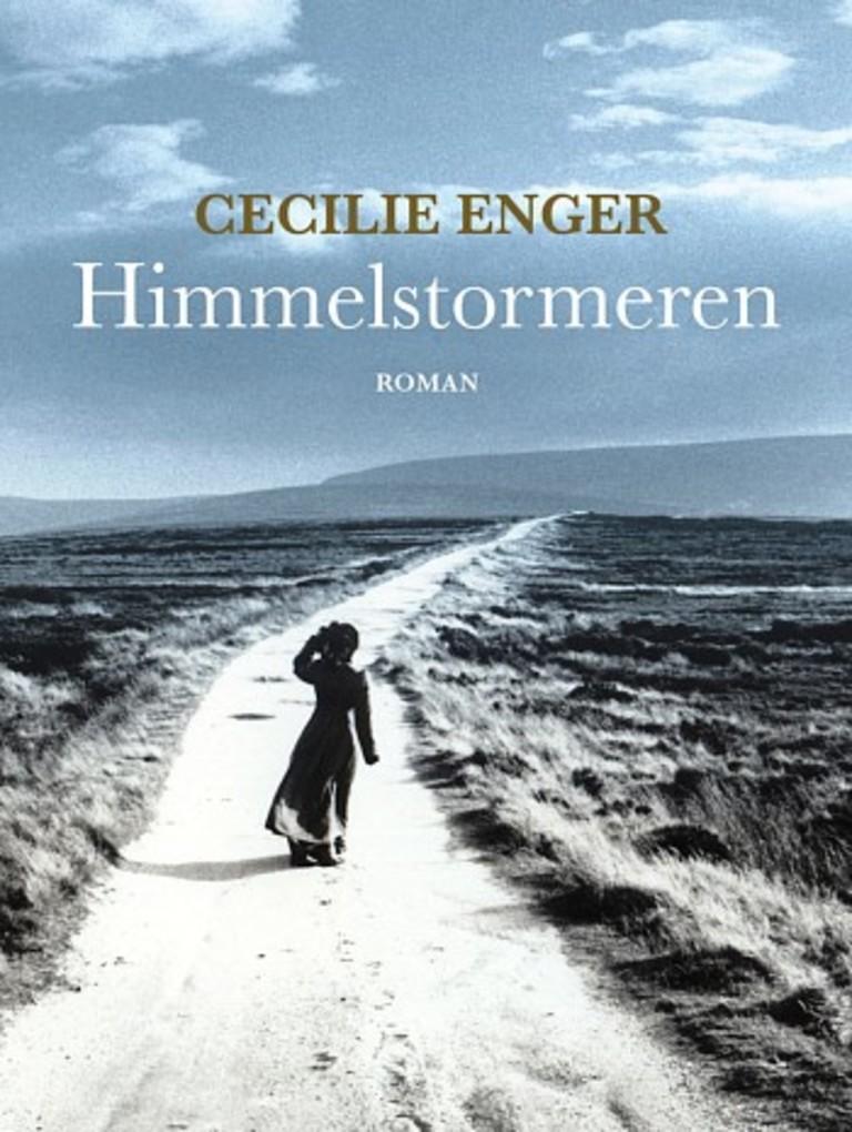 Himmelstormeren : en roman om Ellisif Wessel