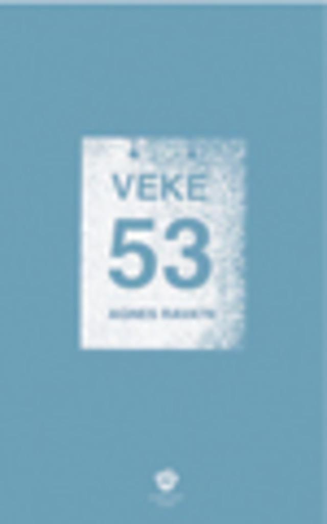 Veke 53 : roman