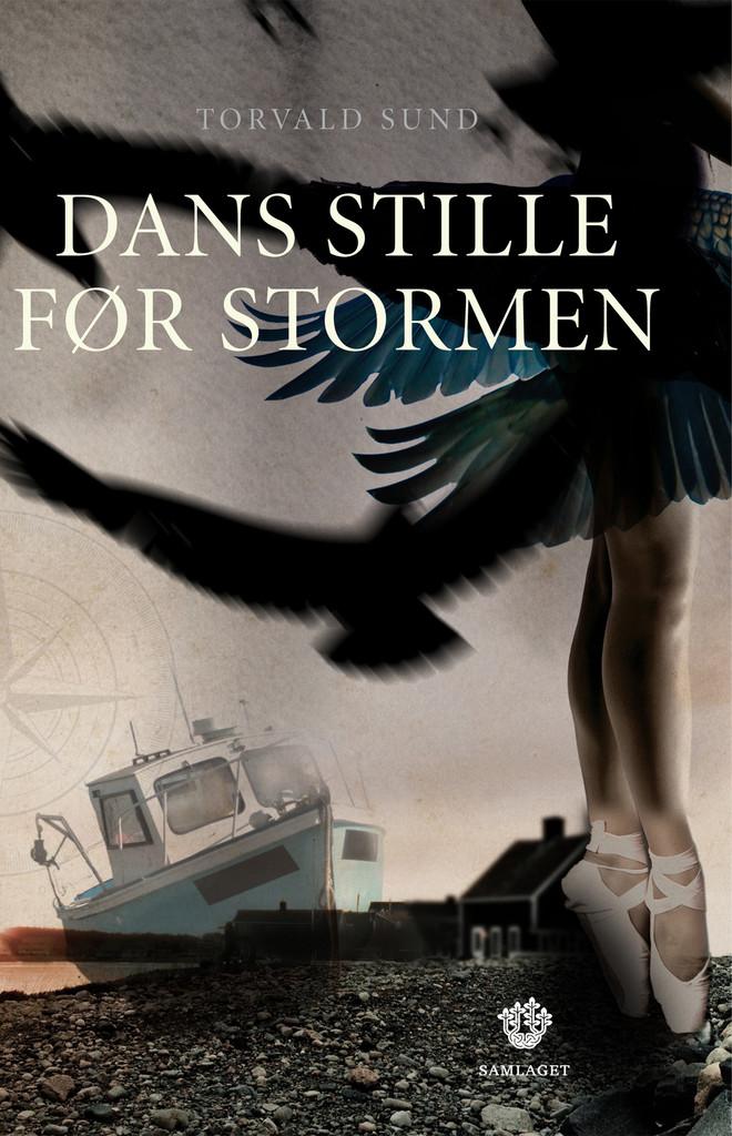 Dans stille før stormen : roman