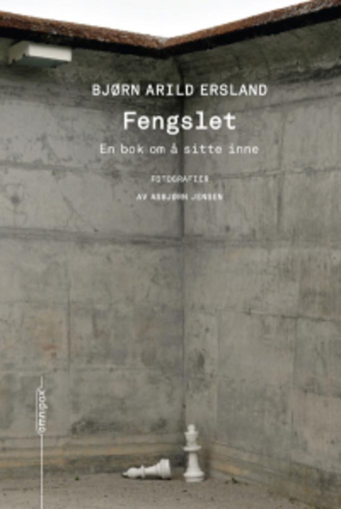Fengslet : En bok om å sitte inne