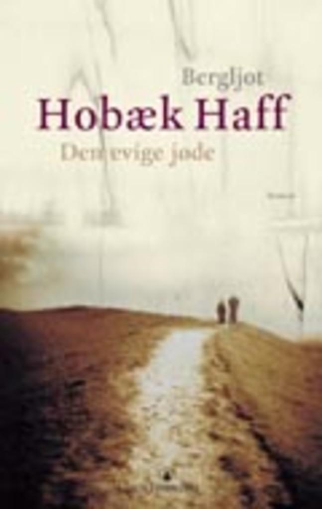 Den evige jøde : roman