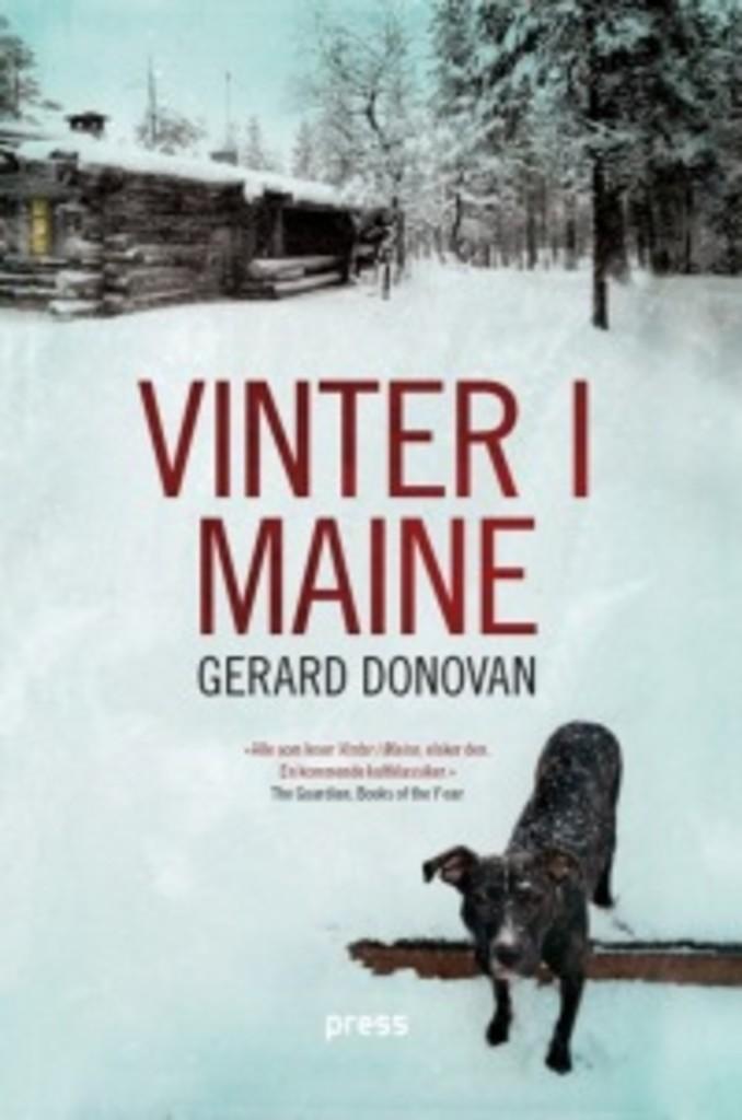 Vinter i Maine : roman