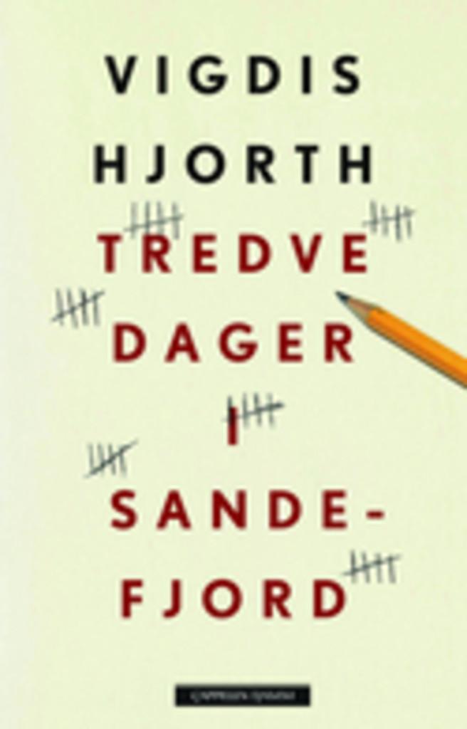 Tredve dager i Sandefjord : roman