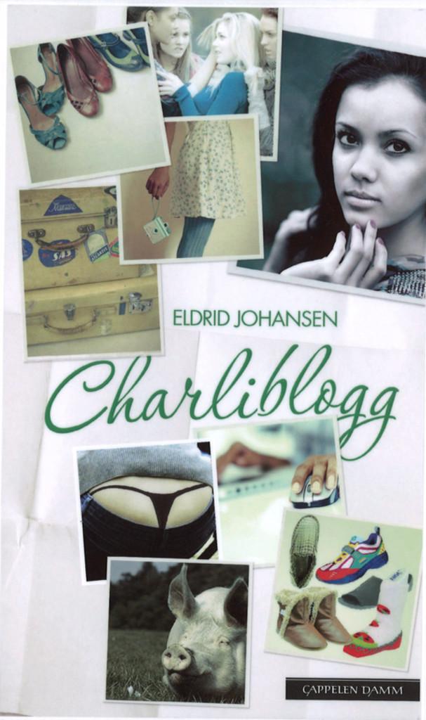 Charliblogg : roman