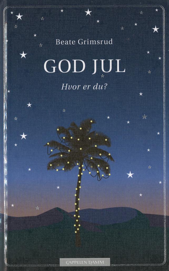 God jul : hvor er du? : julaftener jeg har levd, steder jeg har sovet og søsteren min : fortelling