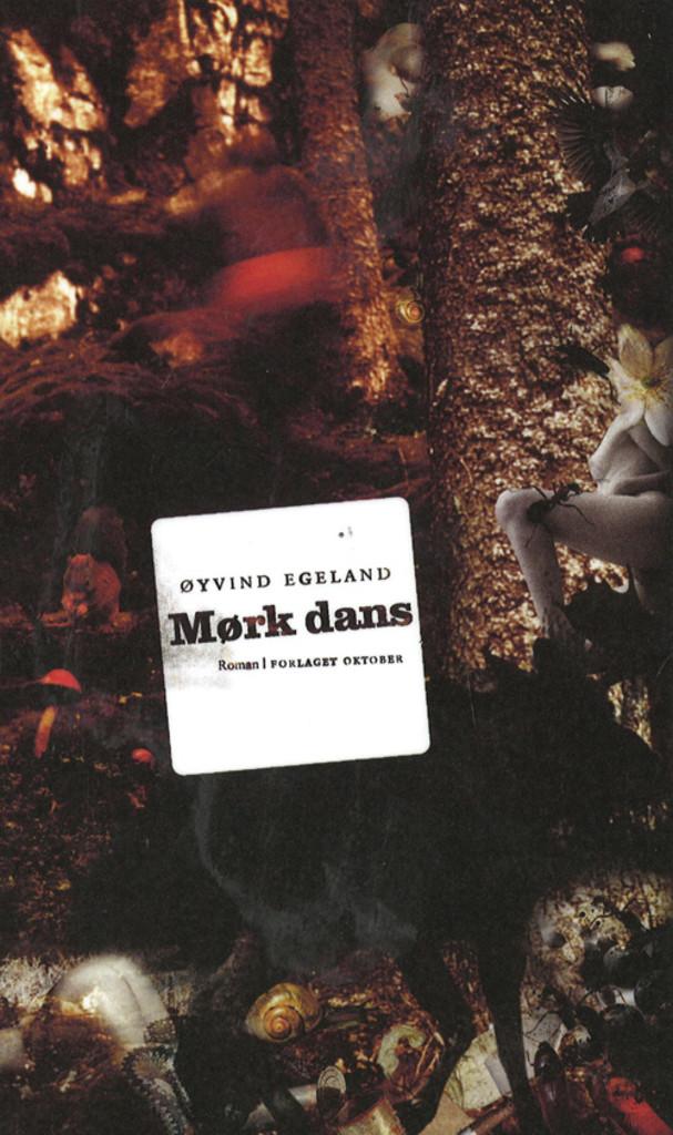 Mørk dans : roman