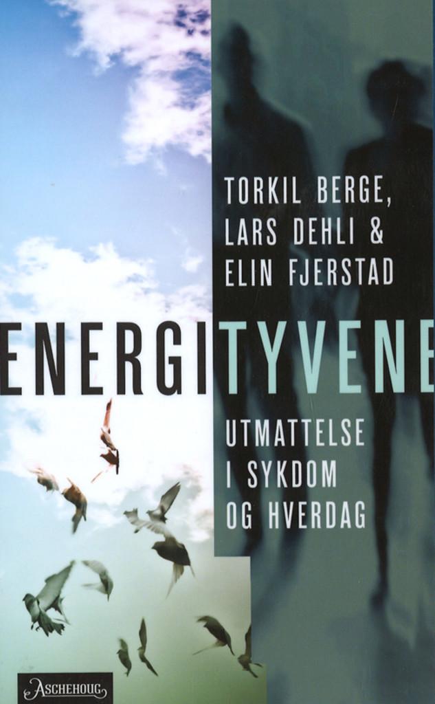 Energityvene : utmattelse i sykdom og hverdag
