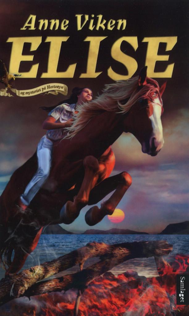 Elise og mysteriet på Hesteøya : roman . 3