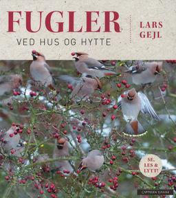 Fugler ved hus og hytte