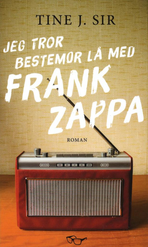 Jeg tror bestemor lå med Frank Zappa : roman