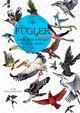 Omslagsbilde:Fugler : fakta og fortellinger fra hele verden