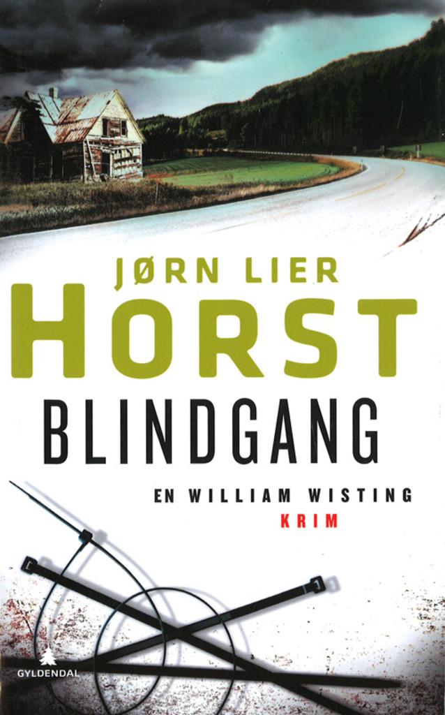 Blindgang : kriminalroman