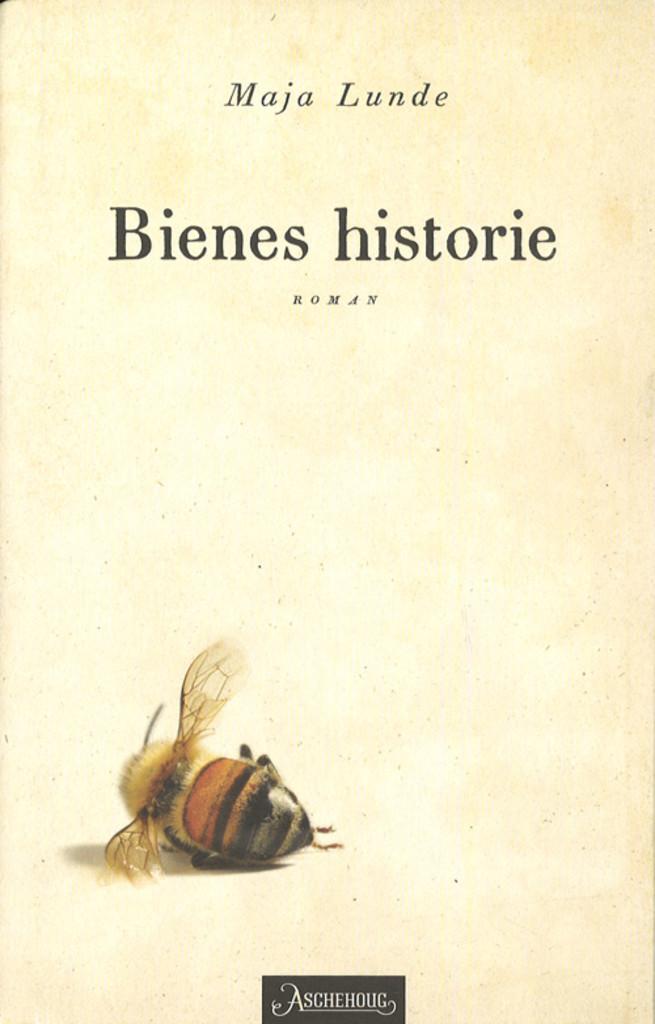 Bienes historie : roman