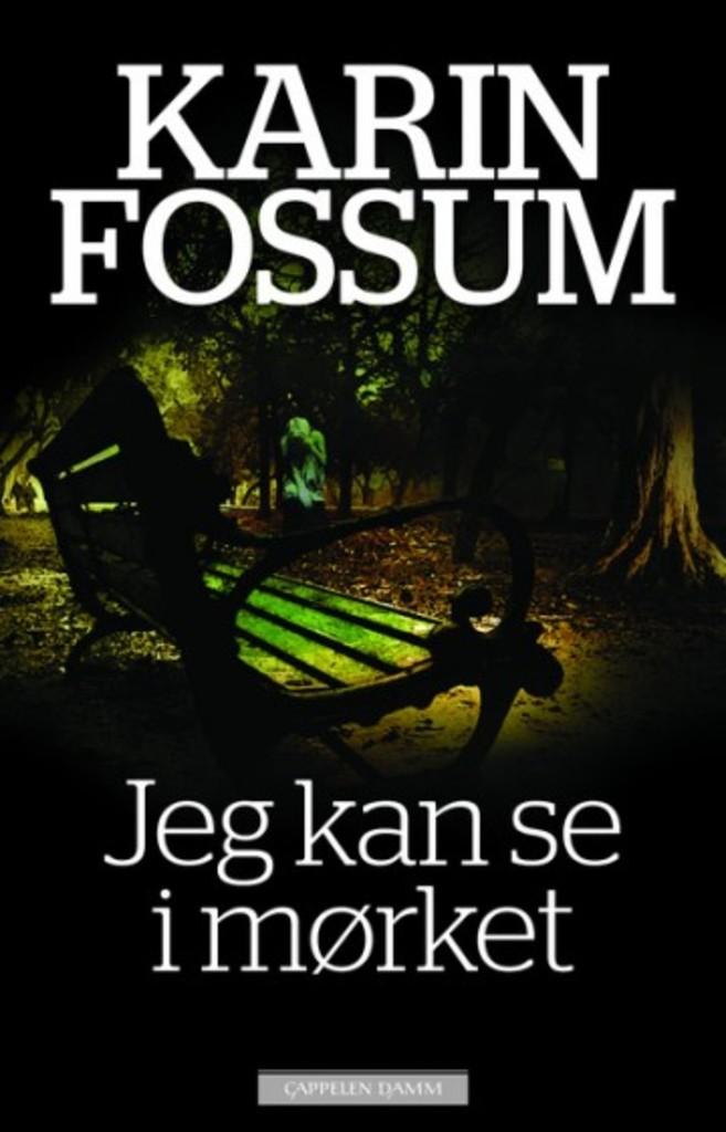 Jeg kan se i mørket : roman