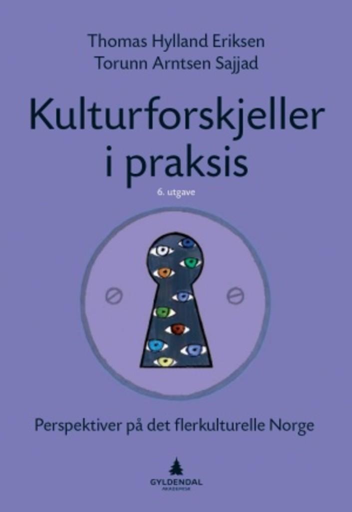 Kulturforskjeller i praksis : perspektiver på det flerkulturelle Norge