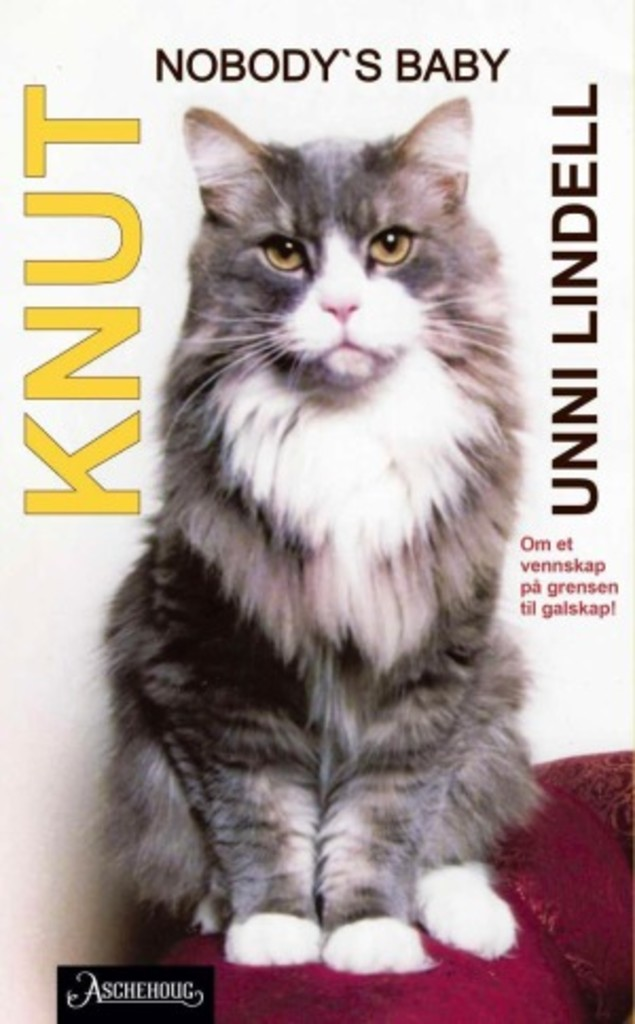 Knut : nobody's baby