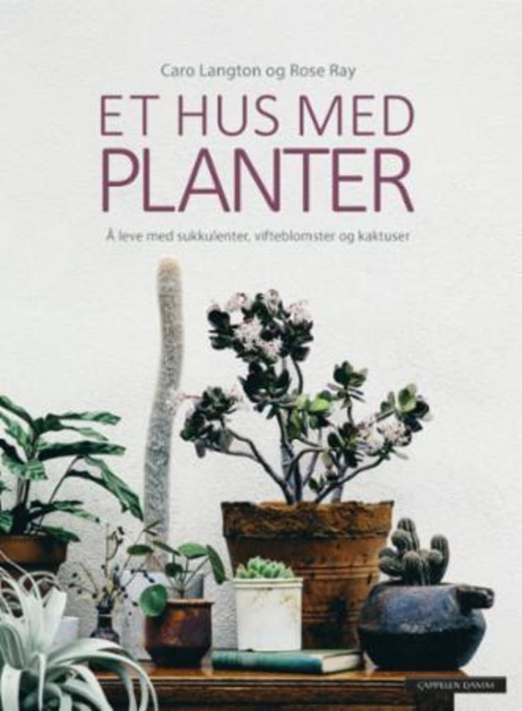 Et hus med planter : å leve med sukkulenter, vifteblomster og kaktuser