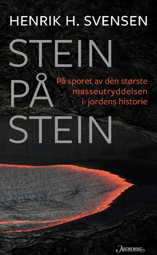 Stein på stein : på sporet av den største masseutryddelsen i jordens historie