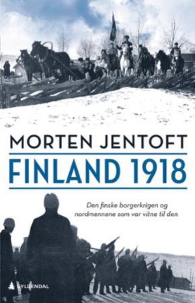 Finland 1918 : Den finske borgerkrigen og nordmennene som var vitne til den