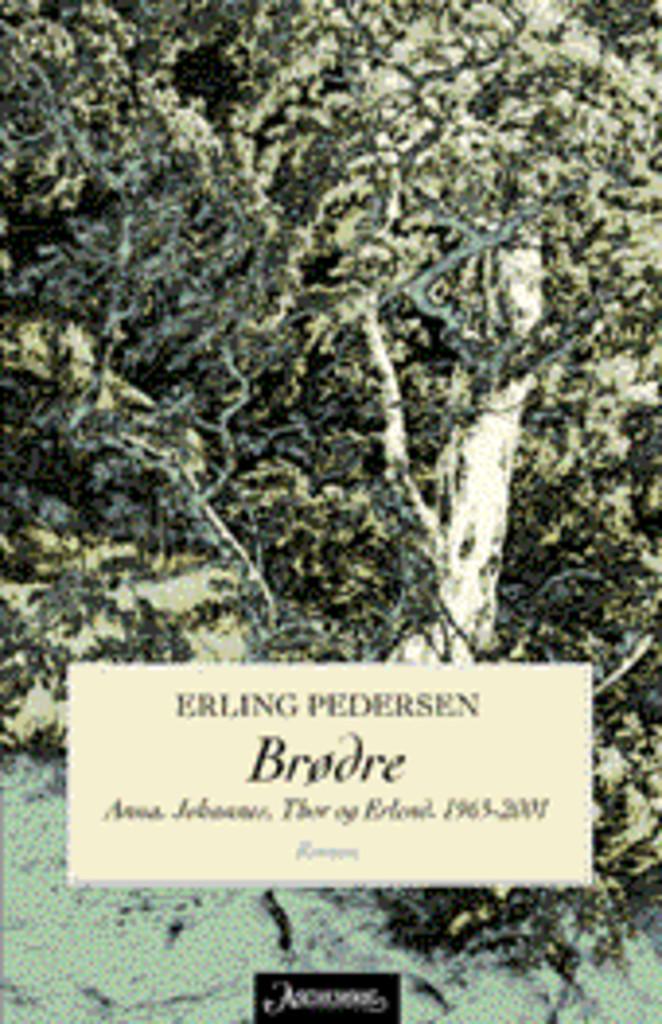 Brødre (4) : Anna. Johannes, Thor og Erlend : 1965-2001