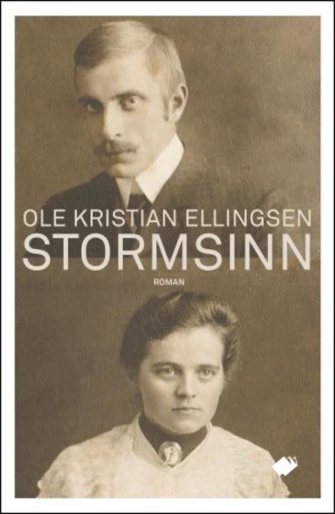 Stormsinn : roman