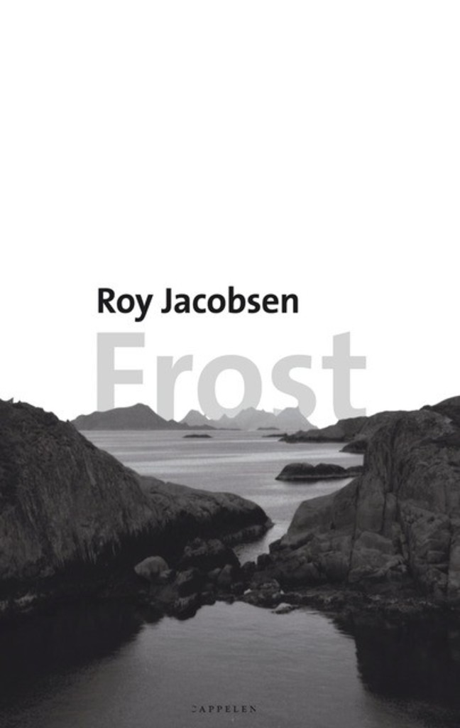 Frost : roman