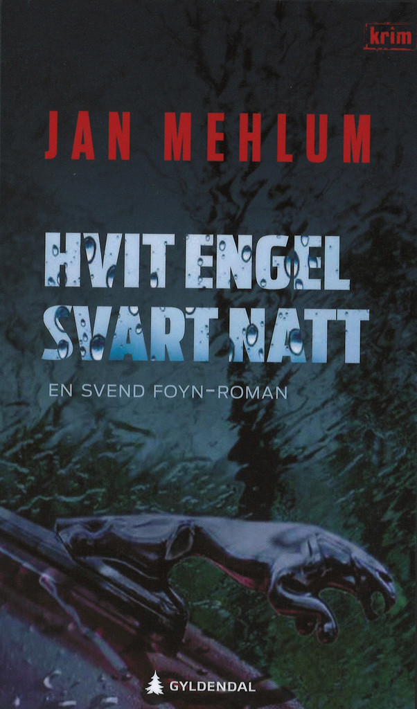 Hvit engel, svart natt : kriminalroman