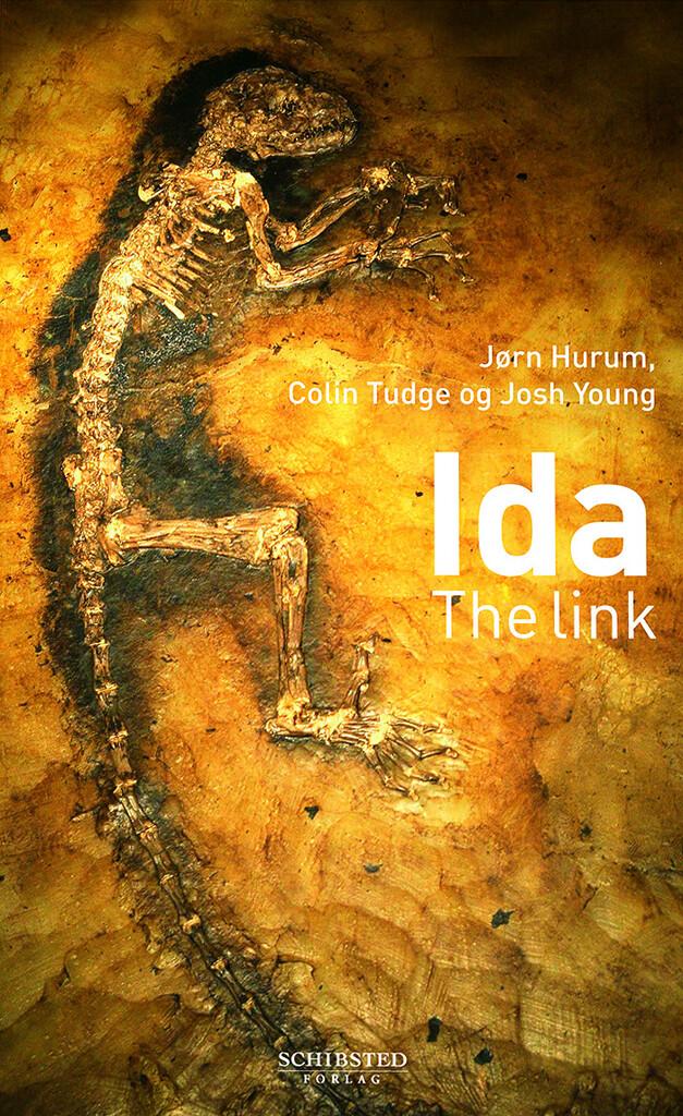 Ida: the link