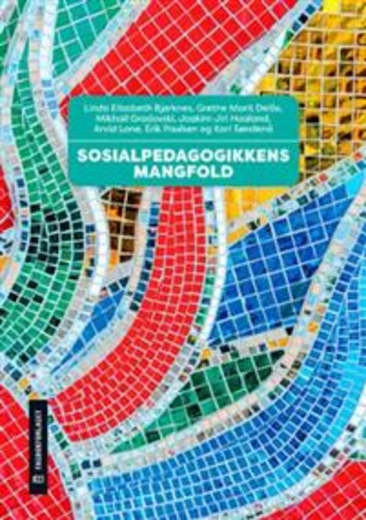 Sosialpedagogikkens mangfold