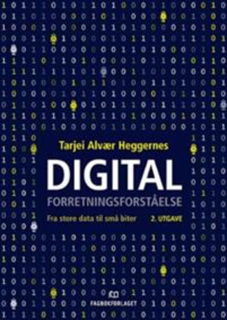 Digital forretningsforståelse : fra store data til små biter