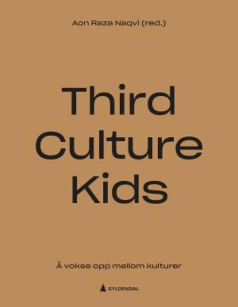 Third culture kids : å vokse opp mellom kulturer