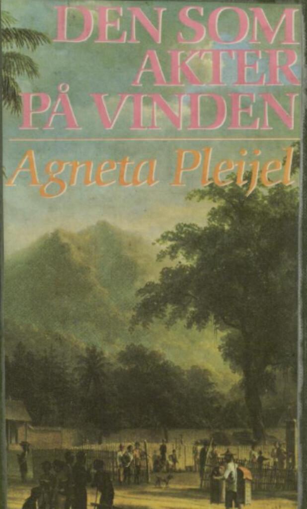 Den som akter på vinden : boken om maleren Abel