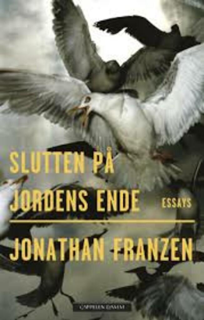 Slutten på jordens ende : essays