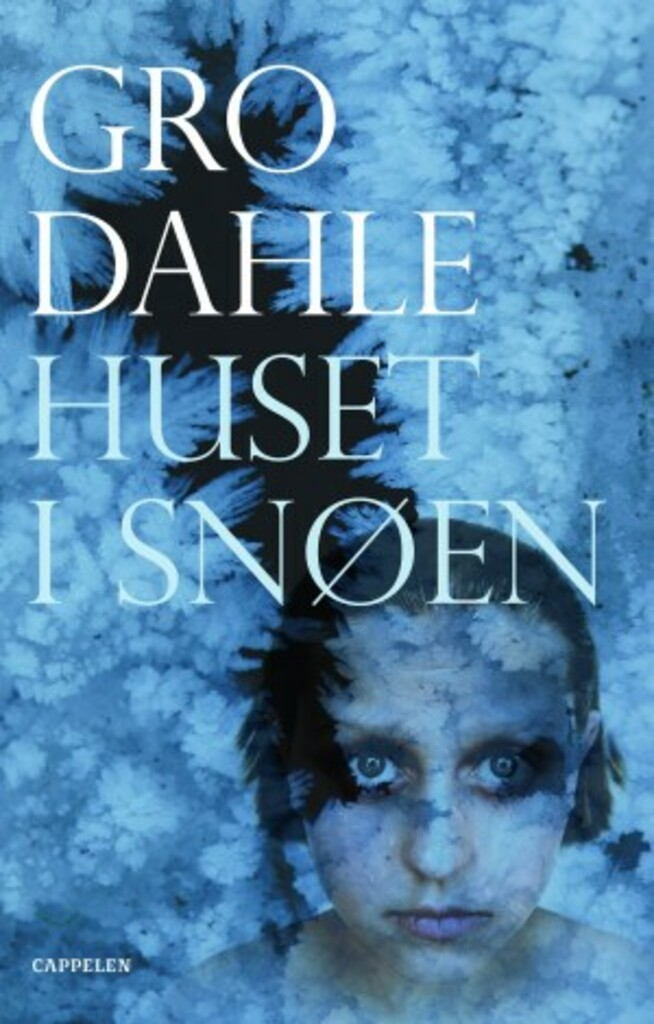 Huset i snøen : roman
