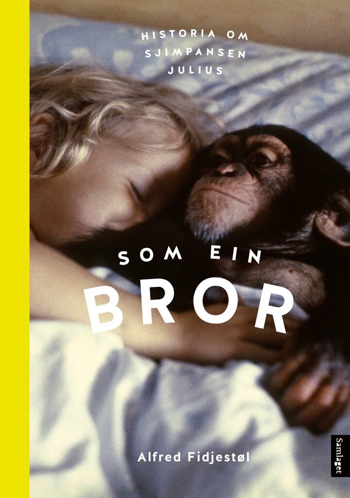 Som ein bror : historia om sjimpansen Julius