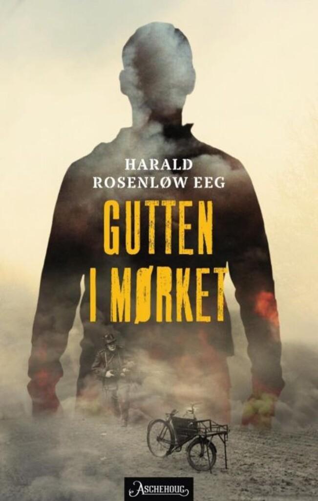 Gutten i mørket : roman
